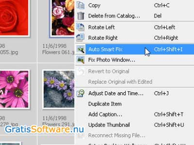 Adobe Photoshop Album Starter Edition screenshot
