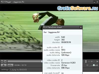 FLV Player screenshot